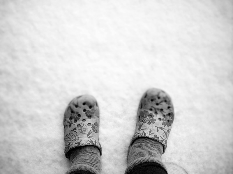 who-wears-crocs-in-the-snow-hehehehe